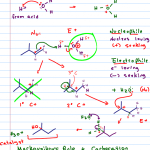 Notes from Organic Chemistry Tutoring Session
