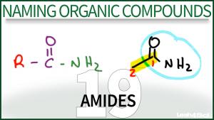 Nomenclature Amides Tutorial Video Leah Fisch Organic Chemistry