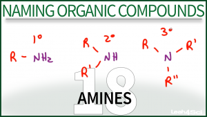 Nomenclature Amines Tutorial Video Leah Fisch Organic Chemistry