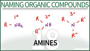 Nomenclature Amines Tutorial Video Leah Fisch Organic Chemistry