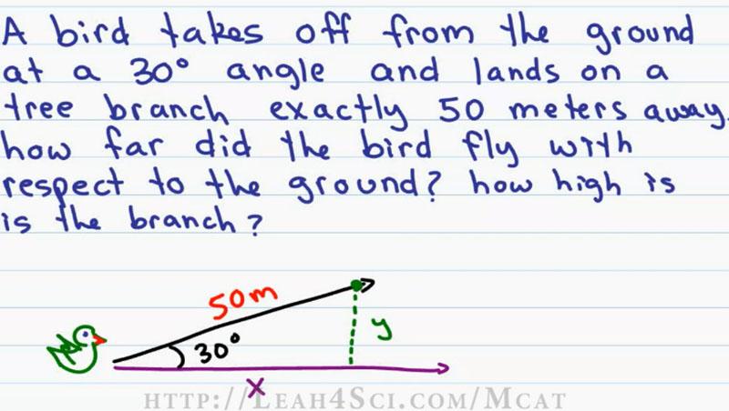 MCAT Physics P2_scap2