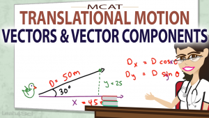 Vectors and Vector Components in MCAT Translational Motion Video by Leah4sci