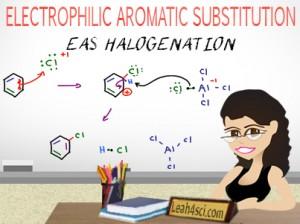 Aromatic Halogenation Electrophilic Aromatic Substitution