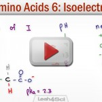 Amino Acid Isoelectric Point Calculation Tutorial Video