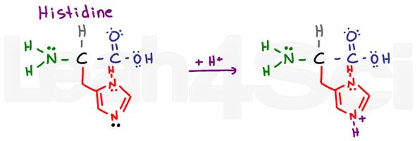 histidine structure