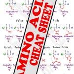 mcat-amino-acids-Cheat-Sheet-preview