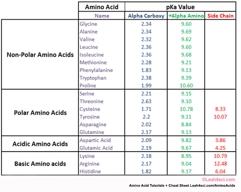 pka amino acids table
