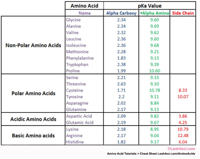 pka amino acids table