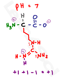 arginine protonated side chain structure