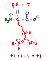arginine protonated side chain structure