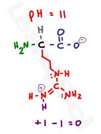 arginine zwitterion amino acid structure