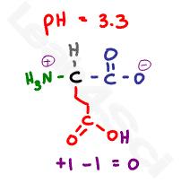 glutamic acid zwitterion neutral form
