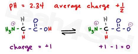 glycine protonated and deprotonated equilibrium