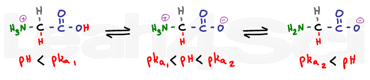 glycine protonated and deprotonated
