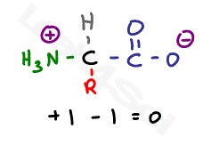 zwitterion structure of amino acid