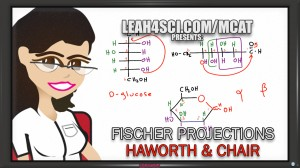Converting Fischer to Haworth and Chair for D-glucose