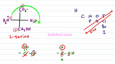Fischer Projection Stereochemistry 2