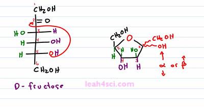 Converting Fischer to Hayworth Pyaranose and Furanose 6
