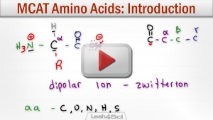 Amino Acids Tutorial Video MCAT Biochemistry Leah4sci