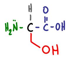 Amino Acid Practice Quiz a
