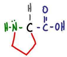 Amino Acid Practice Quiz b