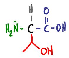 Amino Acid Practice Quiz c