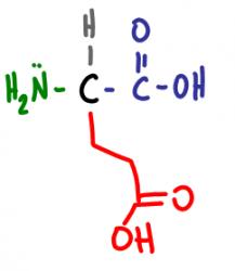 Amino Acid Practice Quiz e