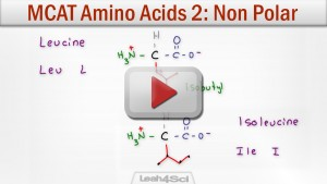 Hydrophobic Amino Acids Neutral Non Polar tutorial Video by Leah Fisch