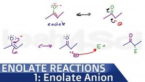Enolate Anion Formation Intro to Enolate Reactions