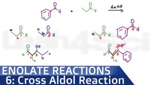 Mixed Cross Aldol Reaction Leah Fisch