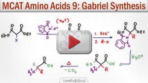 Gabriel Malonic Ester Alpha Amino Acid Synthesis Tutorial Video