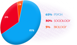Psychological Social and Biological Foundations of Behavior breakdown on the MCAT