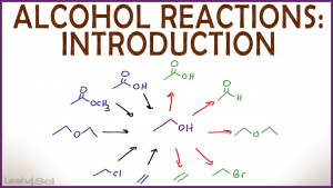 Introduction to Alcohol Properties and Reactions in Organic Chemistry by Leah Fisch