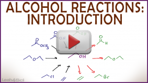 Introduction to Alcohol Reactions by Leah Fisch