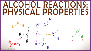 Physical Properties of Alcohol Solubility and Boiling Point in Organic Chemistry by Leah Fisch