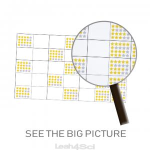 Raising MCAT Practice Full Length Big Picture Leah4sci