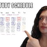 Organic Chemistry Study Schedule by Leah4sci