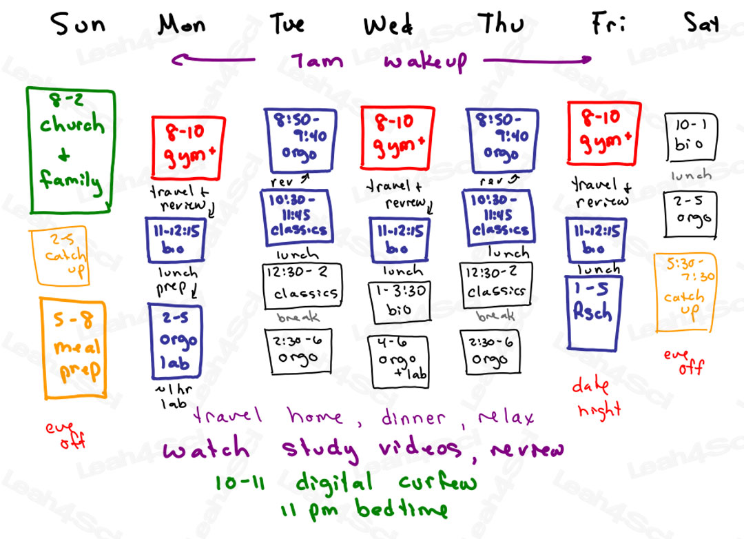 Organic Chemistry Study Schedule full time student premed by Leah4sci