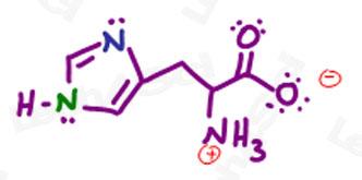 aromaticity of histidine practice question