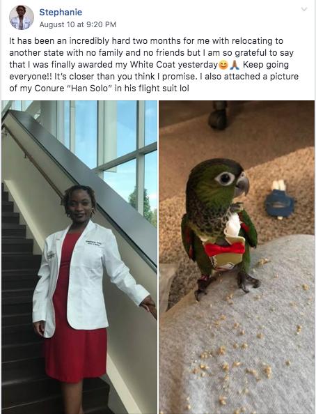leah4sci MCAT premed Stephanie 488 mcat burnout medical acceptance