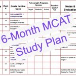 6 month mcat study plan by leah4sci